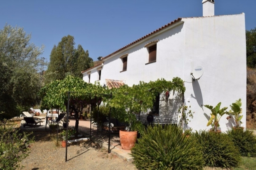 house in Comares