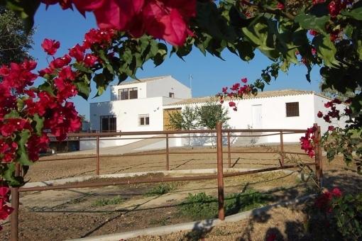 villa in El Aljarafe