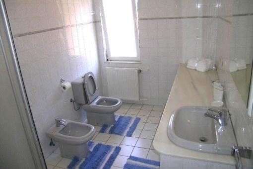 Das Badezimmer mit Tageslicht