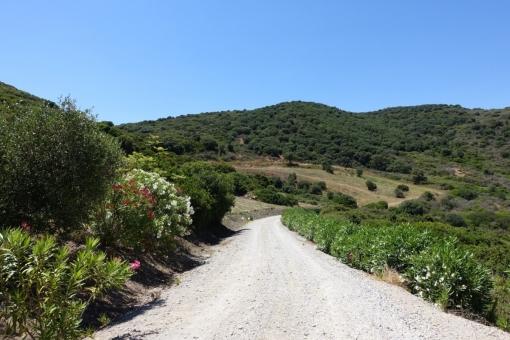 Die Anfahrt zur Finca