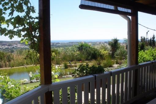 Die Aussicht von der Terrasse