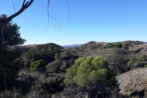 Grundstück in Mijas