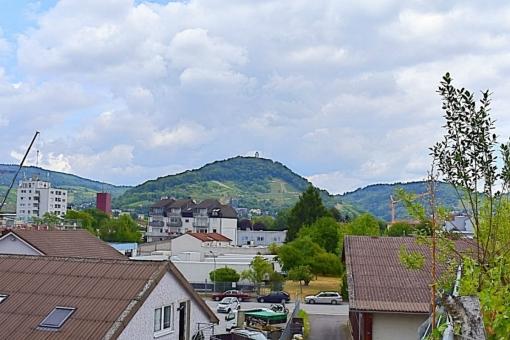 Heppenheim-Buero-Ausblick-Natur