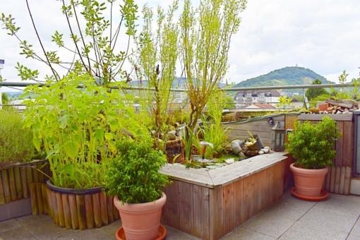 Ein kleiner Teich und Pflanzen sorgen für eine schöne Atmosphäre