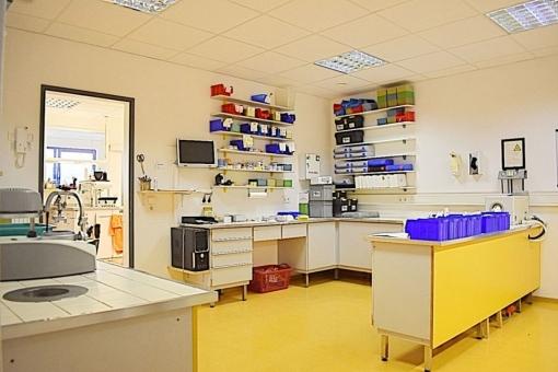 Blick vom Labor in die anderen Räumlichkeiten