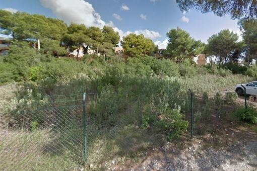 plot in Santa Eulalia