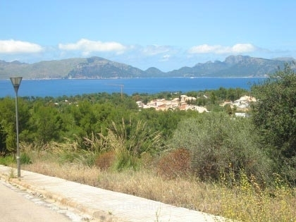plot in Alcudia