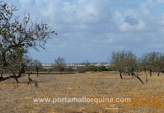 Building plot in Santanyi