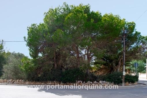 Grundstück in Santanyi
