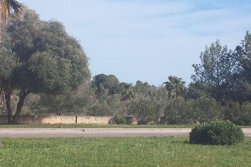 Spacious plot in Santa Ponsa