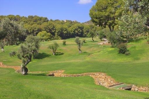 Spacious plot for golf course