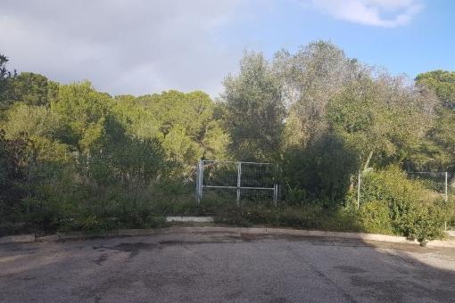 Building plot for a luxury villa in Nova Santa Ponsa