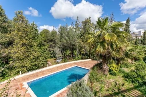 Der Poolbereich wird von einem grünen Garten umgeben