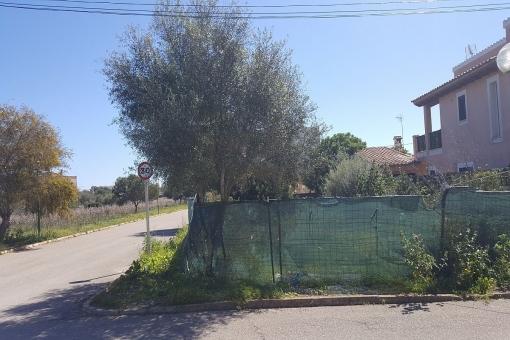 Grundstück in Sa Rapita
