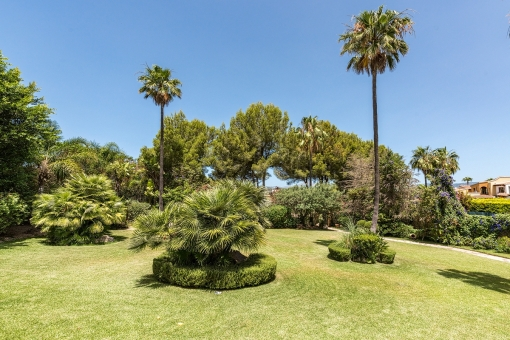 Large, green garden of the property