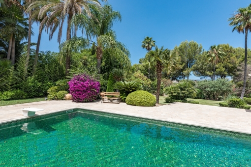 Views of the charming pool area