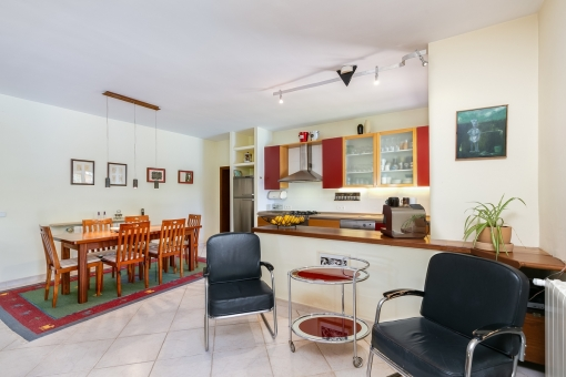 Living and dining area with kitchen