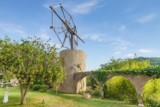 Traditionell mallorquinische Windmühle in märchenhafter Umgebung