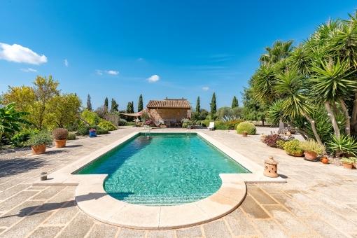 Perfect swimming pool
