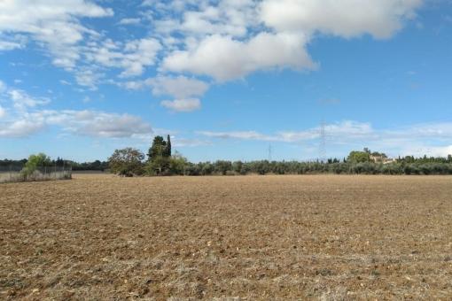 Grundstück in Sencelles