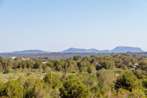 Views to the surroundings