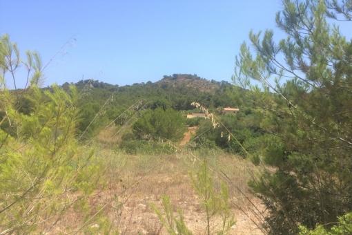Grundstück in Font de sa Cala