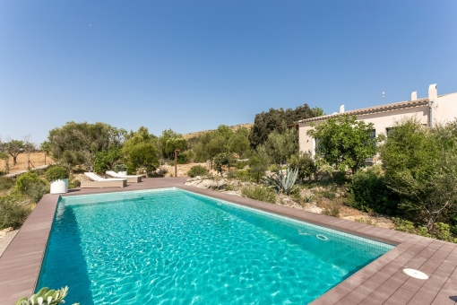 house in San Lorenzo for sale