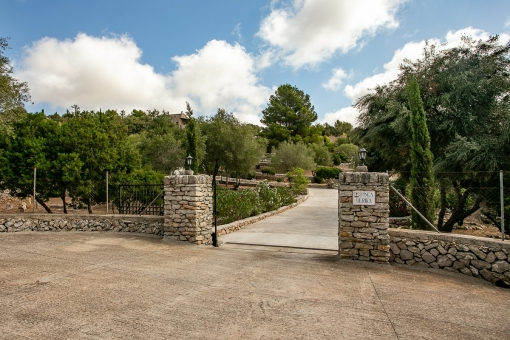 Drive way to the finca