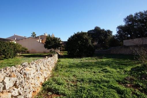 Grundstück in Pina