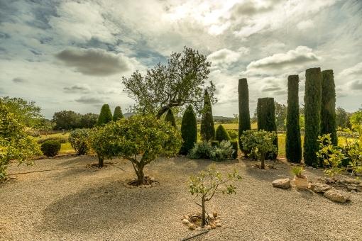 Mediterraner Garten