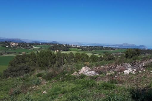 plot in Santa Margalida