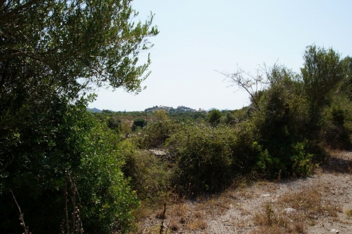 Grundstück in Arta