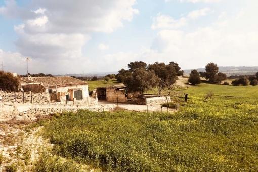 Grundstück in Sineu