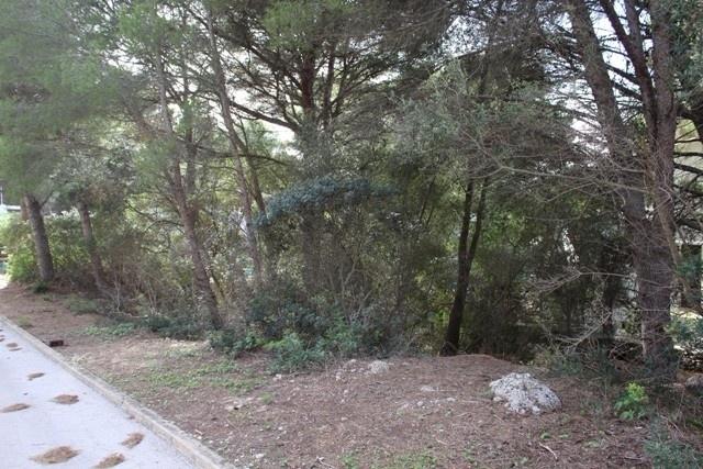 plot in Son Parc Golf