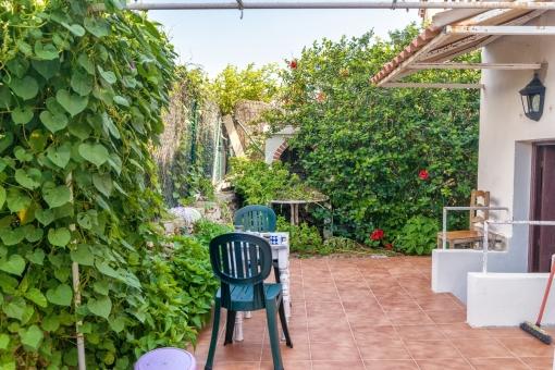 Ein schöner Garten umgibt das Haus