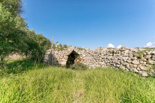Cueva privada en el jardín