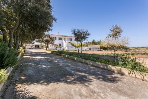 Detached house in Alaior with a plot of land, an orchard and a pool