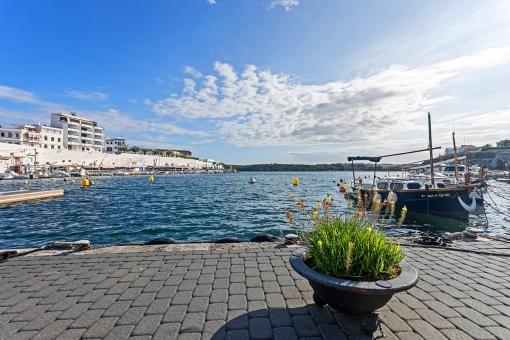 Fantastischer Hafenblick
