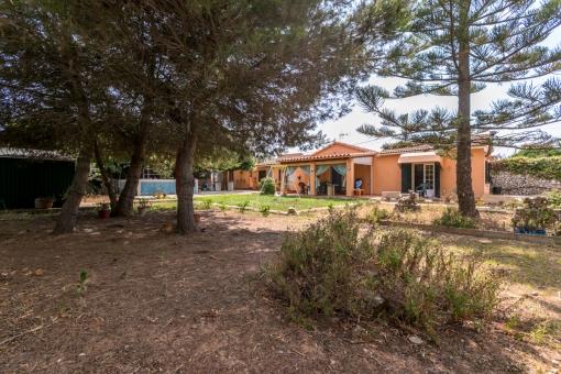 Zwei separate Häuser auf großem Grundstück in La Argentina renovierungsbedürftig