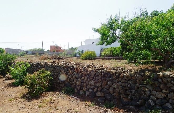 The own land with fruit trees at the house of the finca