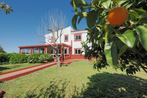 Haus in La Esperanza/Tenerife