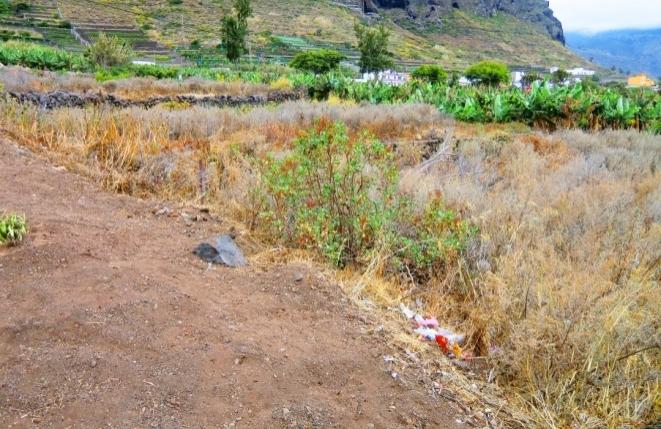 Grundstück in Los Silos